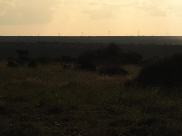 Turkana wind on Mpala